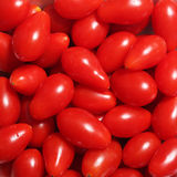Grape tomatoes, background Stock Images