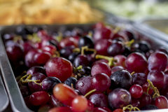 Grape in a tray. Fresh grape tray fruit food Stock Photography