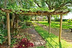 A grape trellis in the garden located on the grounds of the Gonzalez Alvarez House in Historic St. Augustine, Florida. This is an image of a grape vine trellis Royalty Free Stock Photography