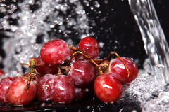 Grape under water Stock Photos