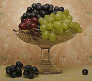 Grape vase Royalty Free Stock Photo