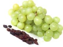 Grape vine Stock Images