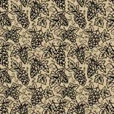 Grape vine background Royalty Free Stock Image