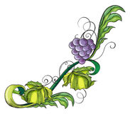 A grape vine border Royalty Free Stock Photo