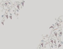 Grape Vine and Branch Illustration line art colour drawing by hand drawn Royalty Free Stock Photography