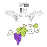 Grape Vine Branches Ornament Vector Royalty Free Stock Photos
