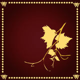 Grape vine with frame. Royalty Free Stock Images