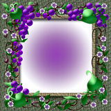 Grape vine frame Royalty Free Stock Images
