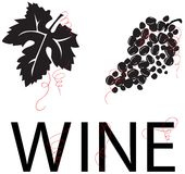 Grape Vine: Leaf, Grapes, & WINE [VECTOR]. Stylized grapes, grape leaf, and the word WINE. Red vine swirl accents. Would look classy on a private wine label, a Stock Photo