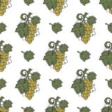 Grape vine and leaf icons seamless wallpaper. Wine cover pattern. Cute retro colors. Good for winery graphic design Stock Photography