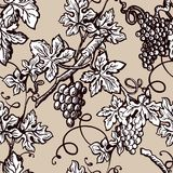 Grape vine vintage seamless vector flourish ornate pattern sketch background Stock Photos