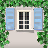Grape vine and window Royalty Free Stock Image