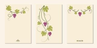 Grape Vines And Decorative Cards Set. Stock Photos