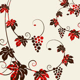 Grape vines background. Royalty Free Stock Image