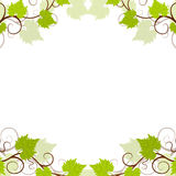 Grape vines background frame. Stock Photo