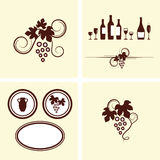 Grape vines and decorative elements set. Stock Images