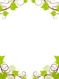Grape vines frame. Stock Image