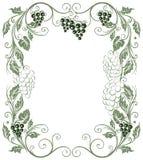 Grape vines royalty free illustration