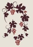 Grape vines silhouettes set. Royalty Free Stock Images