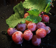 Grapes water drop Royalty Free Stock Photos
