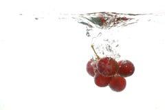 Grape water splash Royalty Free Stock Images
