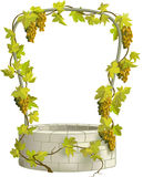 Grape and well. Stone well with arc entwined with vine Royalty Free Stock Photo
