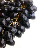 Grape on white  background Stock Photo