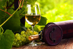 Grape and white wine in vineyard Stock Photos