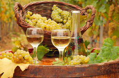Grape and white wine on wooden barrel Stock Images
