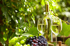 Grape and white wine on wooden barrel Royalty Free Stock Photos