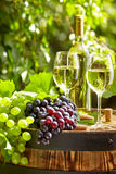 Grape and white wine on wooden barrel Royalty Free Stock Photography