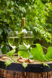 Grape and white wine on wooden barrel Stock Photo