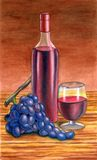 Grape and wine. Hand painted illustration Stock Photo