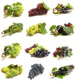 Grape Wine Stock Photos