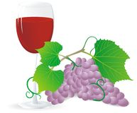Grape and wine Royalty Free Stock Photo
