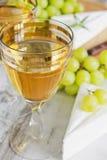 Grape wine Royalty Free Stock Photography