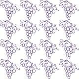 Grape wine seamless pattern Royalty Free Stock Photo
