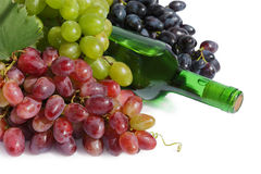 Grape and Wine still-life Royalty Free Stock Photos