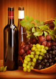Grape wine still life. Photo of grape wine still life, two bottle of vine and basket with different kind of grapes on wooden table, alcohol beverage, fresh juicy Royalty Free Stock Photos