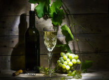 Grape wine. Still life with wine, vine and bunch of grapes Stock Photos