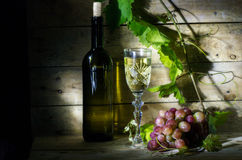 Grape wine. Still life with wine, vine and bunch of grapes Stock Photography