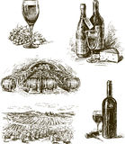 Grape wine Stock Images