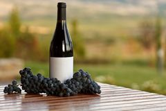 Grape and Wine at Vineyard. Red Grape and Wine at Vineyard on wooden table Royalty Free Stock Photography