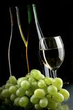 Grape and wines Stock Photography