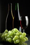 Grape and wines stock image