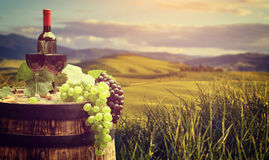 Grape on a wooden barrel. Stock Images