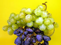 Grape on yellow Stock Photo