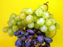 Grape on yellow stock photo