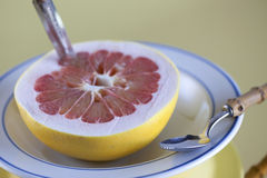 Grapefruit. In bowl with spoon Royalty Free Stock Images