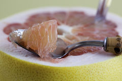 Grapefruit. In bowl with spoon Stock Images